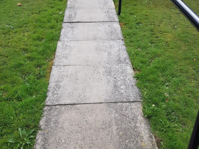 BEFORE Pathway marked with black spots known as lichen